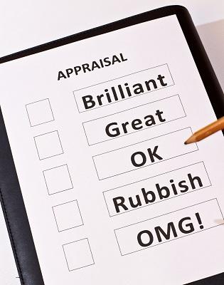 Appraisal Form - Brilliant/Great/OK/Rubish/OMG